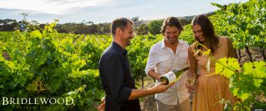 winetasting-Santa-Barbara-wine-tours-tastings