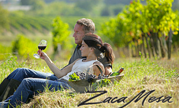 trip-to-vineyards-santa-barbara-on-tour-of-wine-country