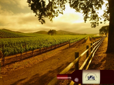 best-wine-tours-santa-barbara